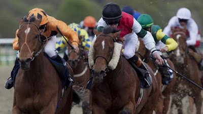 Lingfield racing tips