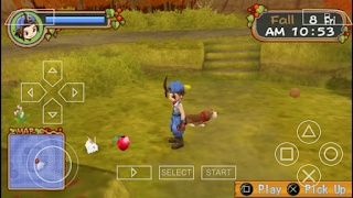 Cara Mendapatkan Power Berry Harvest Moon Hero of Leaf Valley
