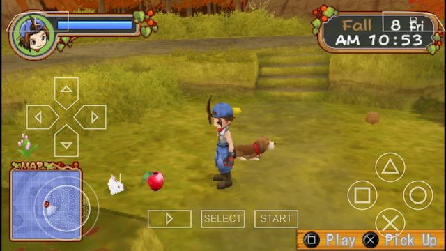 Lokasi Power Berry Harvest Moon HOLV