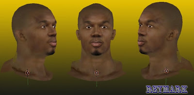 NBA 2K14 David West Cyberface Mod