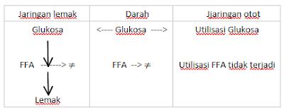 utilisasi-glukosa-ffa