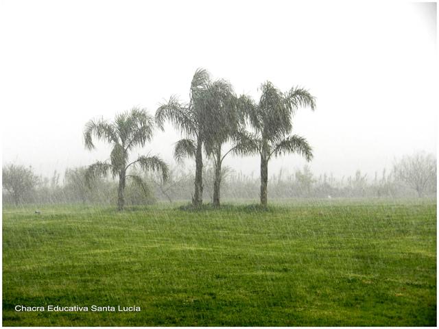 Hasta que las gotitas se precipitan en forma de lluvia - Chacra Educativa Santa Lucía