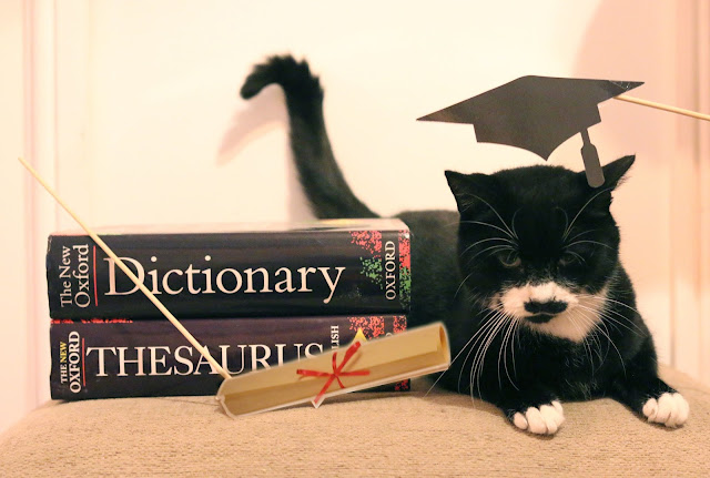 whiskas kitten kollege campaign - cat with dictionary and thesaurus wearing graduation cap with certificate