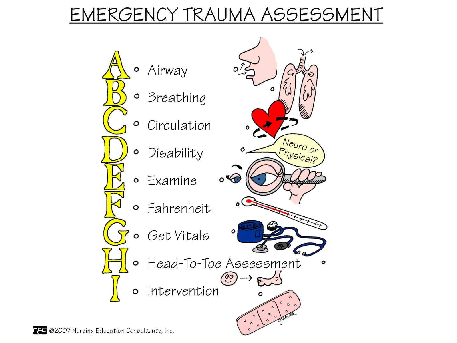 Nursing School: Assessment Mnemonics
