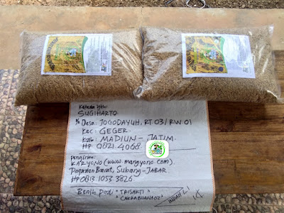 Benih pesanan SUGIHARTO Madiun, Jatim.   (Sebelum Packing)