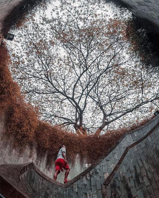"""Tuyệt vời nhất là vào thời điểm chuyển mùa, khi cây cối đổi màu lá, bạn sẽ được thấy nơi đây """"thay áo mới"""" với sắc vàng cam lãng mạn của mùa thu. Một khi đã đến đây, bạn sẽ luôn ra về với nhiều tấm ảnh đẹp bất kể thời điểm nào trong năm."""