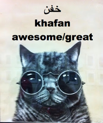 Khafan is slang for awesome or great in Persian Farsi language