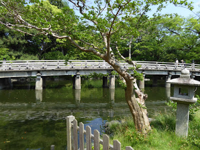 京都御苑・厳島神社 サルスベリ(百日紅)と 石灯籠と高倉橋