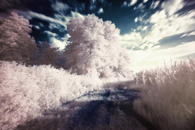 photo de paysage rever