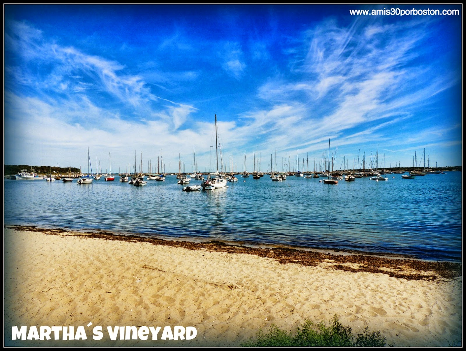 Martha´s Vineyard, Playas de Massachusetts