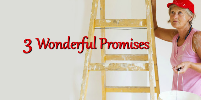 One aspect of dying to ourselves is the idea of our selfish life purposes. This 1-minute devotion explores what this means by unpacking 3 wonderful promises.#BibleLoveNotes #Bible