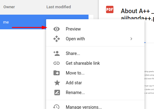 pdf-google-drive-access-previe