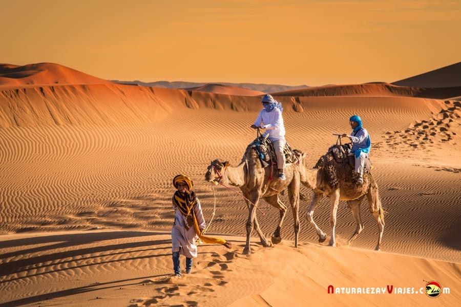 Turistas sobre dromedarios en el desierto de Merzouga