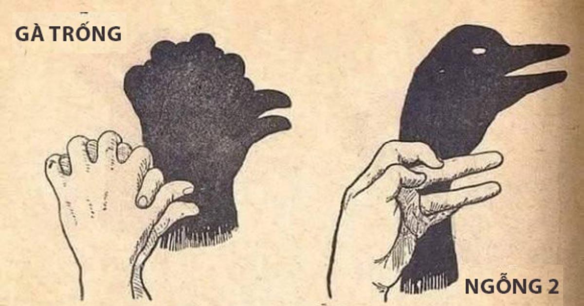 Bí mật của nghệ thuật tạo bóng hình từ bàn tay thông thạo