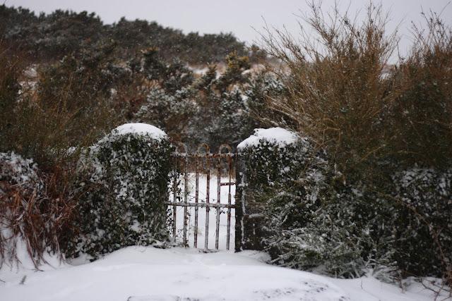 Gate, stone wall, snow