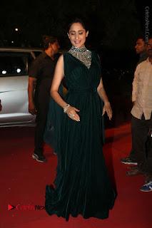 Actress Pragya Jaiswal Stills in Green Long Dress at Gemini TV Puraskaralu 2016 Event  0079.JPG