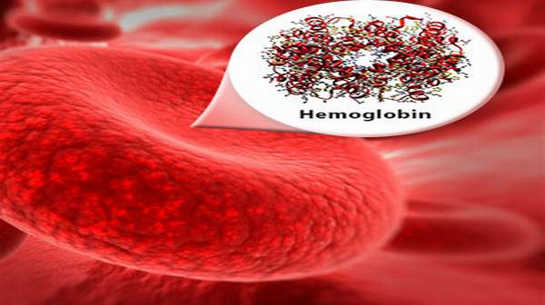 How To Increase Your Hemoglobin Level In Hindi