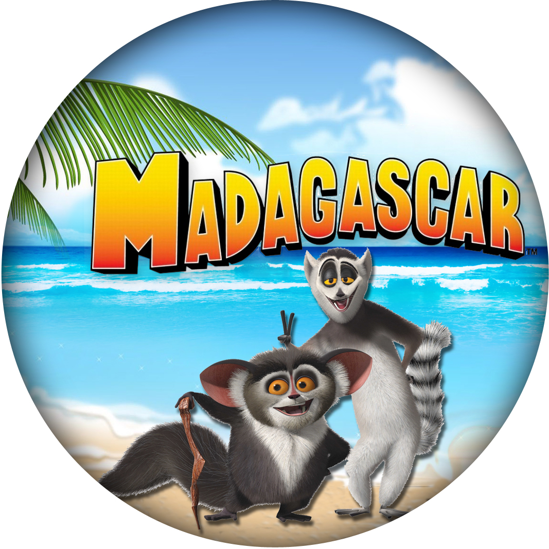 Artes E Fotos Digitais Artes Do Madagascar