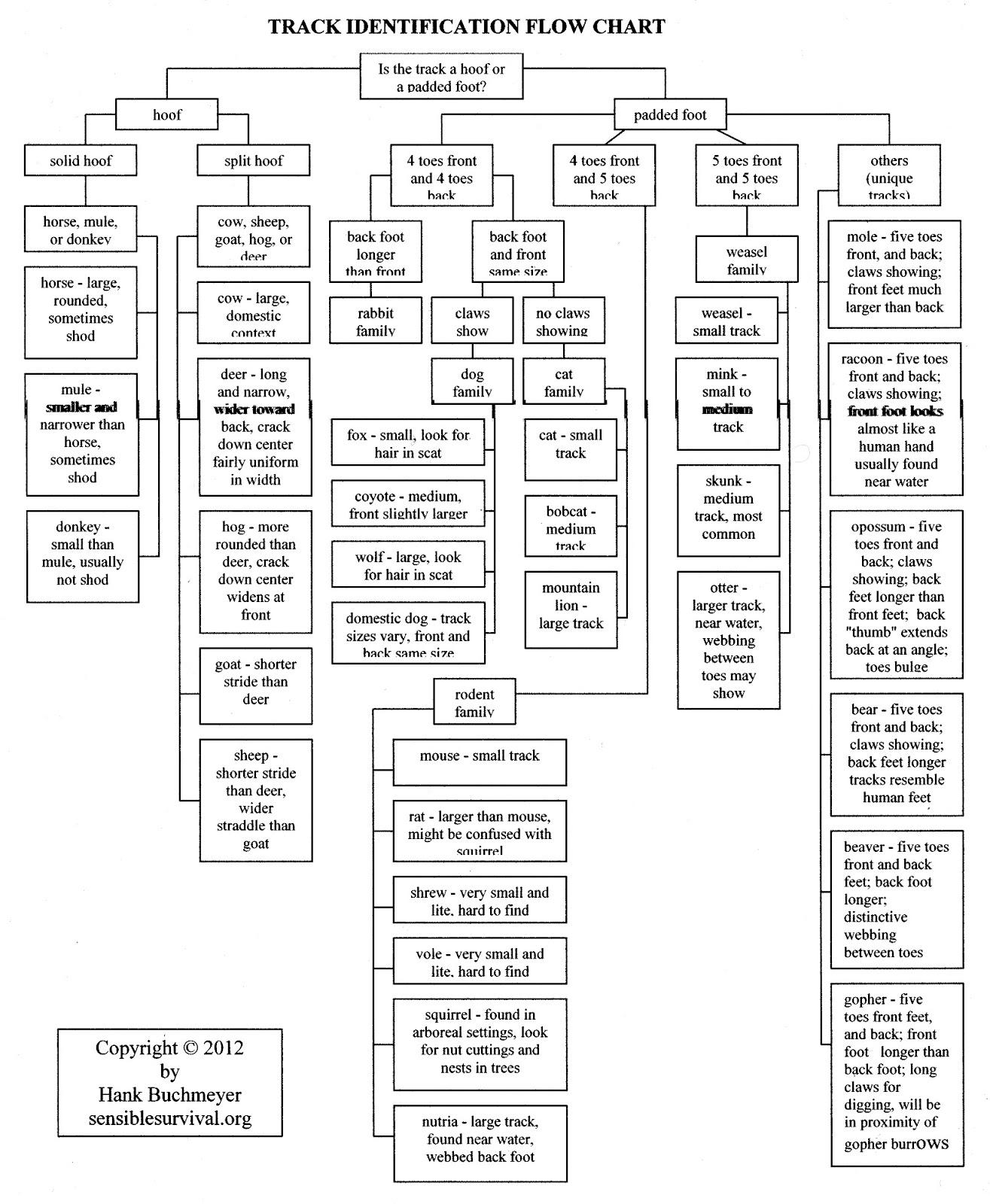 Production flow chart for skim milk powders. | Download ... |Flow Chart Identifying Powders