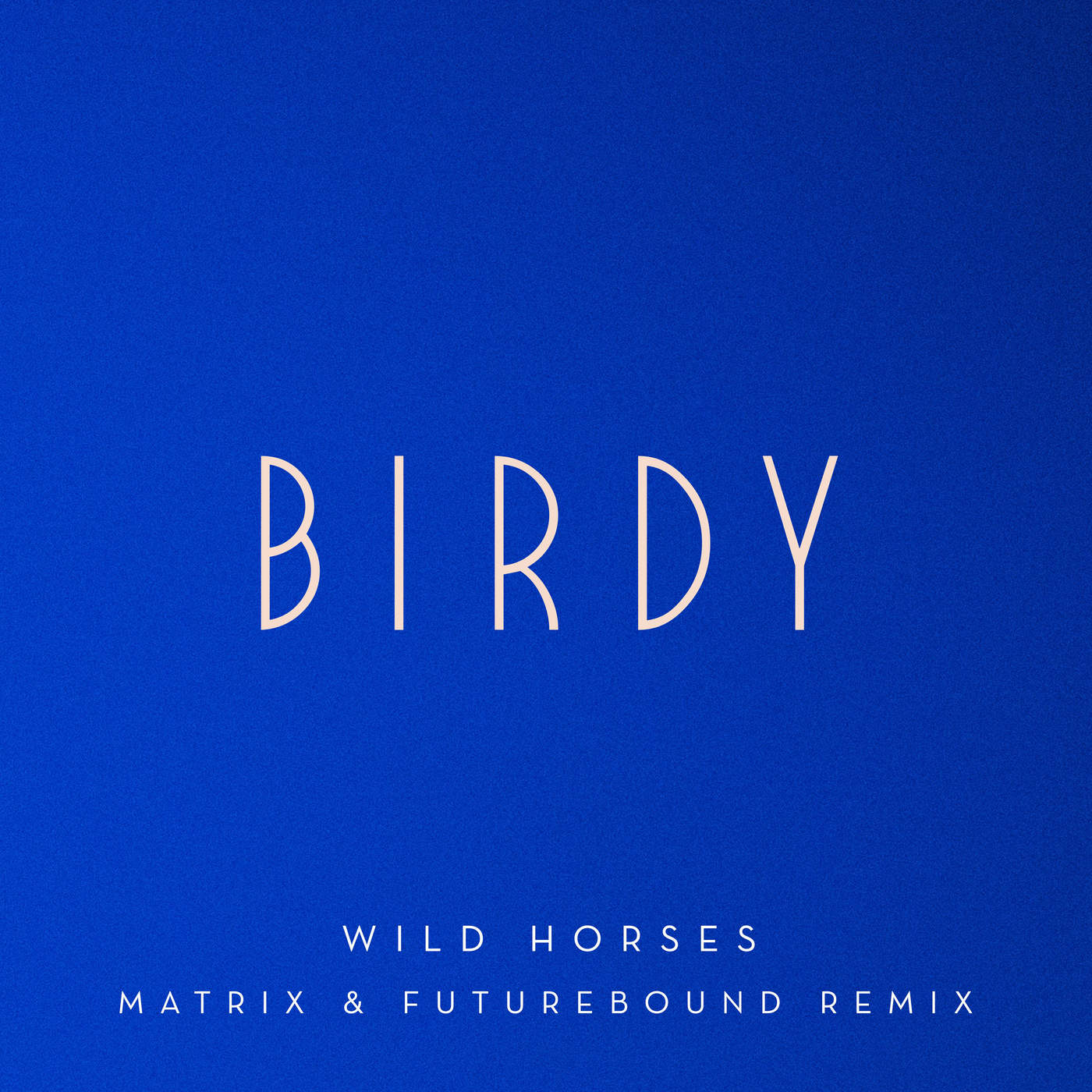Birdy - Wild Horses (Matrix & Futurebound Remix) - Single Cover