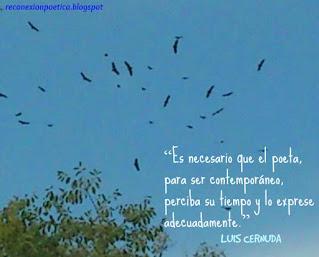 blogdepoesia-poesia-miguel-angel-cervantes-contemporaneo