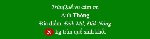 Trùn quế Đăk Mil - Đăk Nông