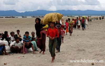 Rohingya Crisis Paragraph
