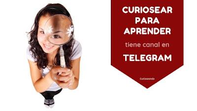 curiosear-para-aprender-tiene-canal-en-telegram