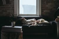 Peaceful and Comfortable Sleep