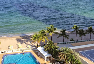 Fort Lauderdale Florida Vacation Rental By Owner, Beach Condo