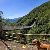 Il ponte tibetano in valle Sementina