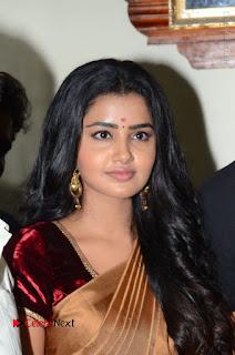 Actress Anupama Parameswaran Stills in Silk Saree with Shatamanam Bhavati Team at Sandhya Theater  0009.JPG