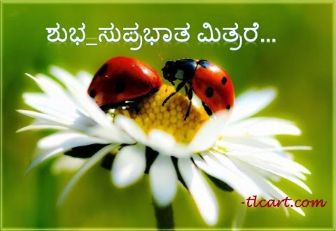 ಕಲಭಮನ Good Morning Wishes In Kannada