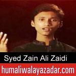 https://www.humaliwalyazadar.com/2018/09/syed-zain-ali-zaidi-noha-2019.html