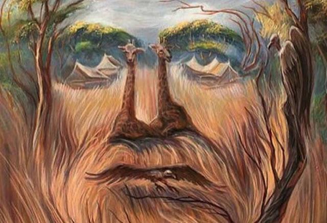 pinturas ilusao otica ambiente de leitura carlos romero