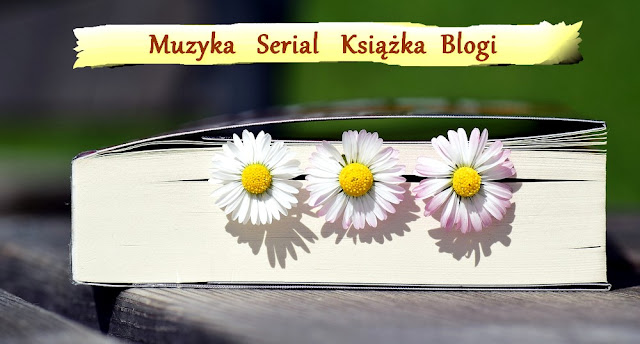 muzyka, serial, książka, blogi