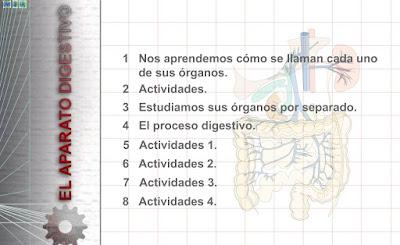 http://www3.gobiernodecanarias.org/medusa/eltanquematematico/pizarradigital/AparatoDigestivo/inicio_cm.html