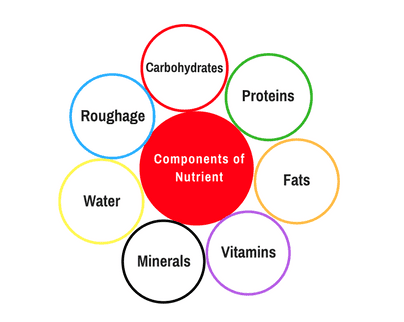Why is Nutrition important for our body? macronutrients, micronutrients.