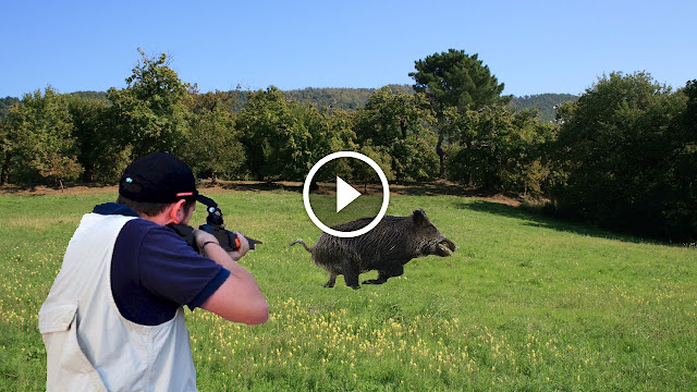 Les meilleurs moments de chasse au sanglier made in Italy