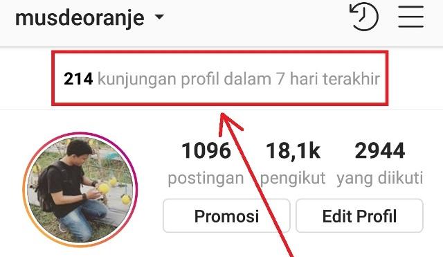 Cara Menghilangkan Kunjungan Profil Dalam 7 Hari Terakhir Instagram Musdeoranje Net