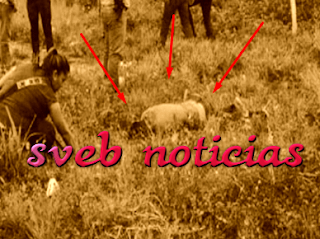 Arrojan cuerpo mutilado y sin vida  sobre la autopista Córdoba-Fortín
