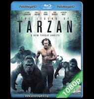 LA LEYENDA DE TARZÁN (2016) FULL 1080P HD MKV ESPAÑOL LATINO
