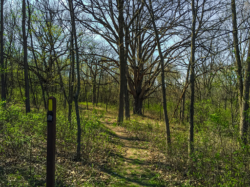 Ice Age Trail - Arbor Ridge Segment