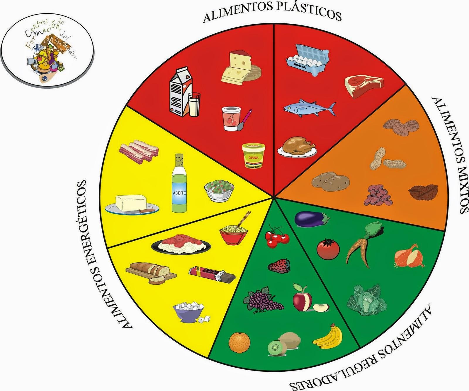imagenes de la ruleta alimenticia