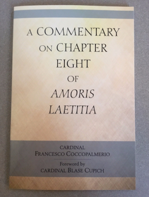 Amoris Laetitia Development of Doctrine