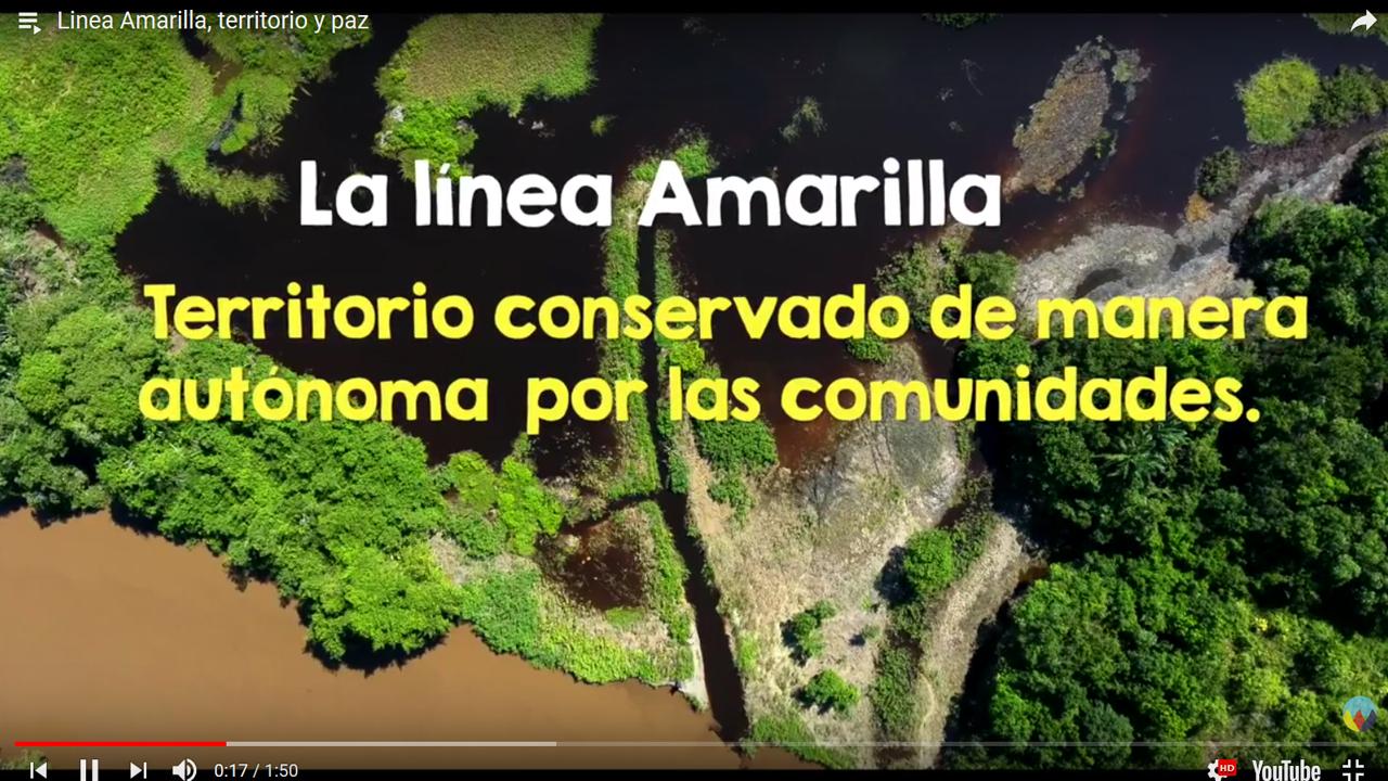 Linea Amarilla, territorio y paz
