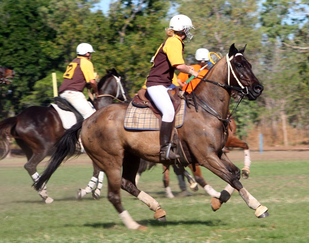 Barbietch Polo Game And Beautiful Horses