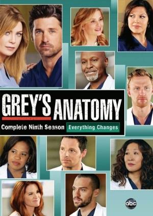 Baixar Grey's Anatomy 9ª Temporada Dublado