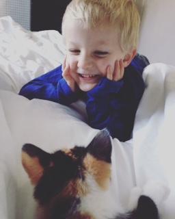 warum Haustiere für Kinder wichtig sind