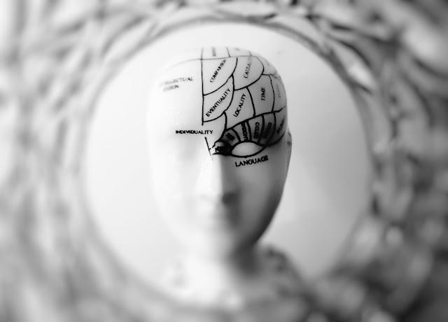 Tips Jika Si Dominan Otak Kiri Masuk dalam Dunia DKV